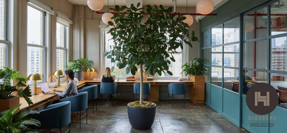 نورپردازی و انتخاب رنگ در طراحی دکوراسیون داخلی اداری